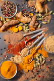 Assorted spice and herb Royalty Free Stock Images