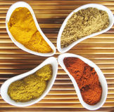 Assorted spices. Assortment of 4 powdered spices: turmeric, cumin, paprika and curry Royalty Free Stock Photo