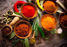 Assorted spices Stock Photography