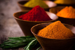 Assorted spices Royalty Free Stock Images