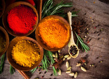 Assorted spices Stock Images