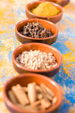 Assorted spices in bowls Royalty Free Stock Image