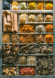 Assorted spices filling an old printers tray Royalty Free Stock Photos