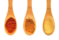 Assorted spices and seasonings on spoons Stock Photography