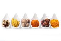 Assorted spices in the serving spoons Royalty Free Stock Images