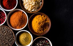 Assorted spices Stock Image