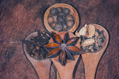 Assorted spices on wood Royalty Free Stock Image