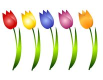 Assorted Spring Tulips Flowers Clip Art. A clip art illustration featuring a variety of individual isolated tulips in red, yellow, blue, purple and orange Stock Photo