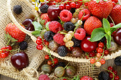Assorted summer berries Royalty Free Stock Image