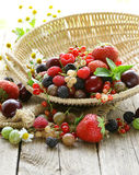 Assorted summer berries Stock Images