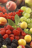Assorted summer fruit Royalty Free Stock Photos