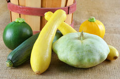 Assorted Summer Squash Royalty Free Stock Photography