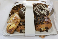 Assorted sweet pastry tray Stock Photography