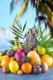 Assorted tropical fruits on the beach orange , pineapple, lime, mango, dragon fruit, orange, banan, rambutan and lichi. Group of exotic tropical fruits stock image