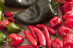 Assorted varieties of chili peppers Stock Photography