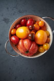 Assorted varieties of tomato in a colander Royalty Free Stock Photography