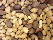 Assorted Variety of Nuts for Sale. Stock Image