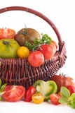 Assorted variety of tomato Stock Photography