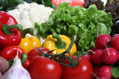 Assorted Vegetables royalty free stock photos