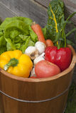 Assorted vegetables. Stock Image