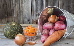 Assorted vegetables lying beside a galvanized tin pail. Horizontal image of a silver galvanized pail lying on its side filled with red potato and onion and stock photography
