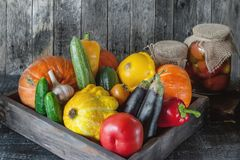 Assorted vegetables, pumpkin, zucchini, eggplant, garlic, green onions, and tomatoes on a wooden background in rustic style with f royalty free stock images