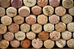 Assorted wine corks Stock Photography