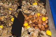Assorti des fruits de mer frais délicieux à vendre Photographie stock libre de droits
