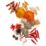 Assorti du poivre noir d'épices, poivre blanc, fenugrec, cumin, b image libre de droits