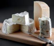 Assortiment de fromage d'un plat en bois photo stock