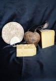 Assortiment de fromage de montagne Image stock