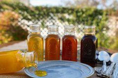 Assortiment de miel, la gamme de couleur et saveurs photographie stock libre de droits