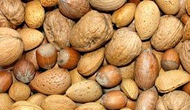 Assortiment de noix Image libre de droits