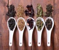 Assortiment de thé sec Photo stock