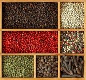 Assortiment des grains de poivre Photo stock