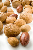 Assortiment des noix Image stock