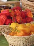 Assortiment des poivrons de piments colorés dans les paniers en osier Images stock