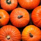 Assortiment des potirons d'automne Vue avec des potirons sur un en bois Photographie stock libre de droits