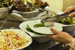 Assortiment des salades Photographie stock libre de droits