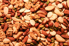 Assortiment Nuts Photographie stock