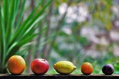Assortiment van biologisch, vers, seizoengebonden fruit royalty-vrije stock foto