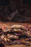 Assortiment van chocoladerepen, truffels, kruiden en cacaopoeder stock foto's