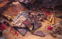 Assortiment van chocoladerepen, truffels, kruiden en cacaopoeder royalty-vrije stock afbeelding