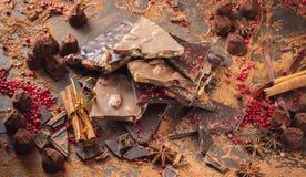 Assortiment van chocoladerepen, truffels, kruiden en cacaopoeder stock fotografie