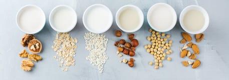 Assortiment van de organische melk van de veganist niet agenda royalty-vrije stock foto