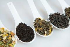 Assortiment van droge thee Diverse soorten thee die op wit worden geïsoleerd Verschillende soorten theebladen Theesamenstelling m Royalty-vrije Stock Foto