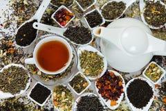 Assortiment van droge thee Diverse soorten thee die op wit worden geïsoleerd Verschillende soorten theebladen Theesamenstelling m Stock Fotografie