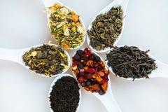 Assortiment van droge thee Diverse soorten thee die op wit worden geïsoleerd Verschillende soorten theebladen Theesamenstelling m Royalty-vrije Stock Foto's