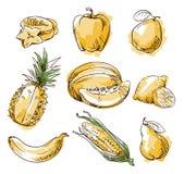 Assortiment van geel voedsel, fruit en vegtables, vectorschets Stock Foto