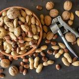Assortiment van noten in hun shell Verschillende soorten noten binnen Royalty-vrije Stock Afbeeldingen